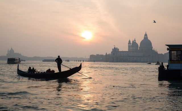 Медузи в каналите на Венеция (видео)