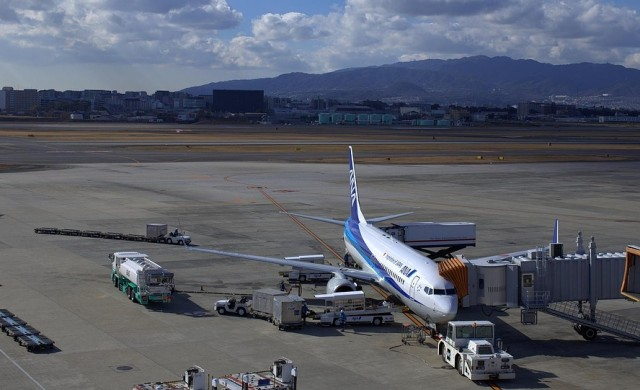 Хапването срещу 540 долара в паркиран на пистата самолет е хит в Япония
