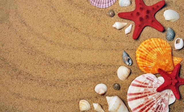 ДНСК ще премахва преместваеми обекти в нарушение в курортите и на плажовете
