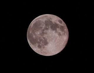 Грандиозна розова Супер Луна ще изгрее на хоризонта този месец