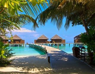 На Малдивите ще предлагат ваксини на пристигащите туристи