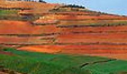 Фондовете притежават над 400 хил. дка земеделска земя