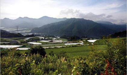 Акция за покупка на храни от засегнатите райони в Япония