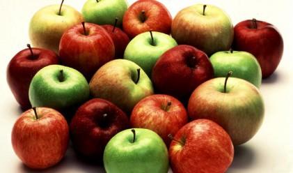 Ябълките поскъпнаха с 13% за седмица