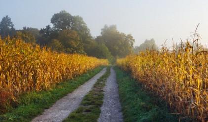 Адванс Терафонд е продало земеделски земи за над 11 млн. лева през първото тримесечие