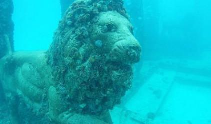 11 атракции под водата