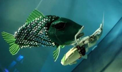 Риби-роботи с изкуствен интелект за 30 хил. долара
