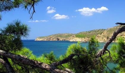 Тасос - островът на маслините