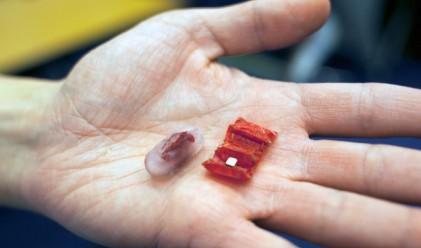 Това миниатюрно оригами се разгъва в стомаха