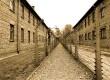 Съкровище, неограбено от нацистите, откриха след 70 г. в Аушвиц