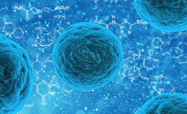 Лечение със стволови клетки: безплатни консултации с топ лекар
