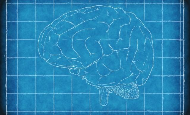 Майчинството променя мозъка на жената завинаги