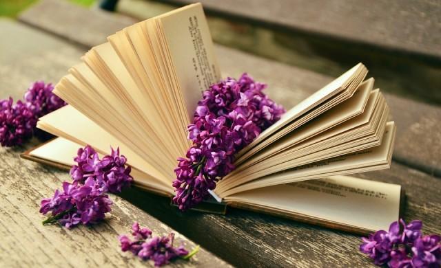 Колко пари са заделили българите за книги и вестници през 2016 г.