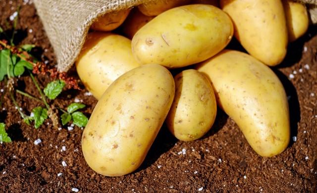 Картофите поскъпнали с 63% от началото на годината