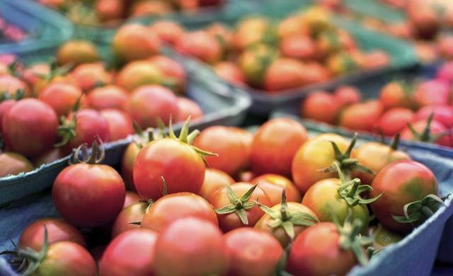 Безработните, заети в селското стопанство, ще получават помощи