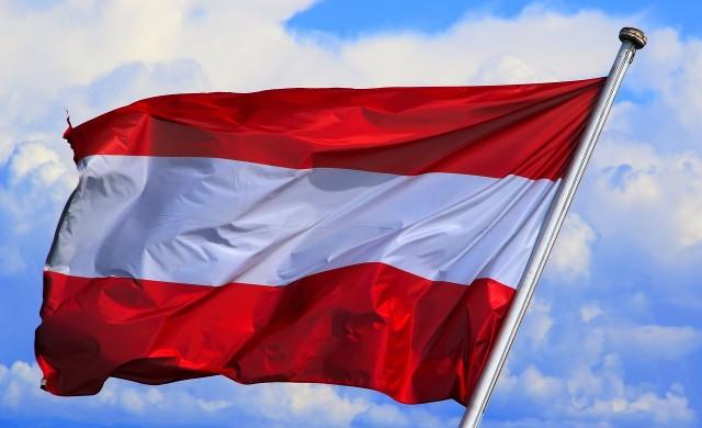 Австрийската полиция хвана в нарушение държавния глава