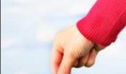 Застрахователните брокери в Топ 20 държат 70% от пазара
