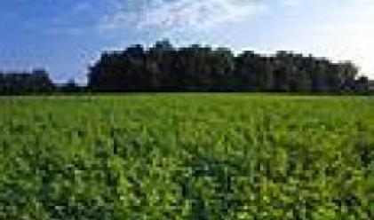 Земеделските стопани ще могат да ползват кредит от търговските банки