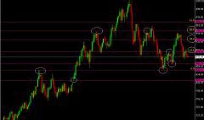 Златото и петролът под натиск