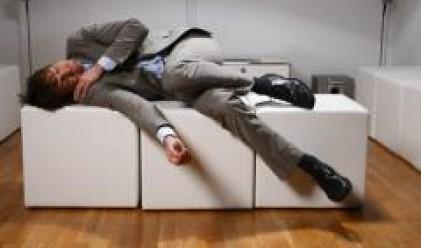 Ползата от съня на работното място