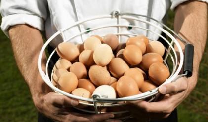 Варна с най-скъпи яйца, кайма, ориз и олио в страната