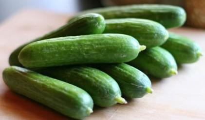 САЩ контролира вноса на зеленчуци от Германия и Испания
