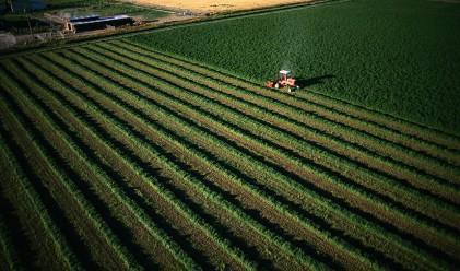 Земеделската земя у нас - по колко и къде?