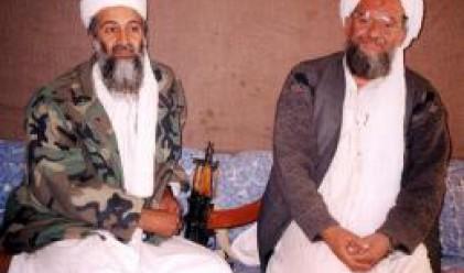 Египтянин наследи Осама бин Ладен