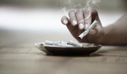 Първи проверки и първи глоби за цигари