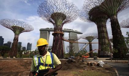 В Сингапур строят супер дървета