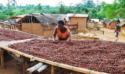 Фермери опитват шоколад за първи път в живота си (видео)