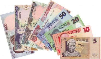 Нигерийската валута поевтиня с 27% днес