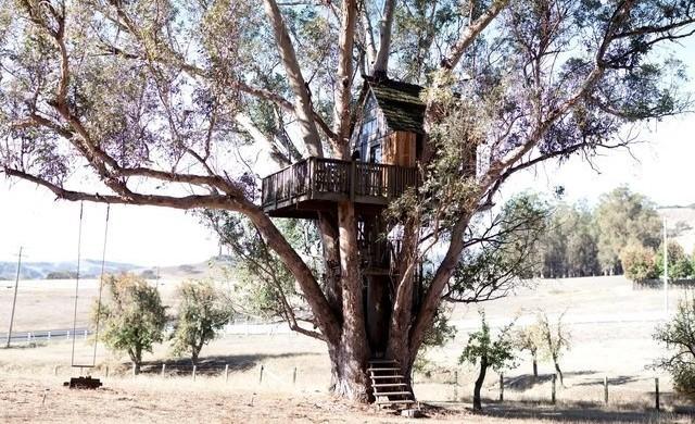 10 страхотни къщи на дърво, които може да наемете