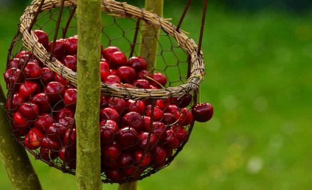 10 вида плодове за красива кожа през лятото