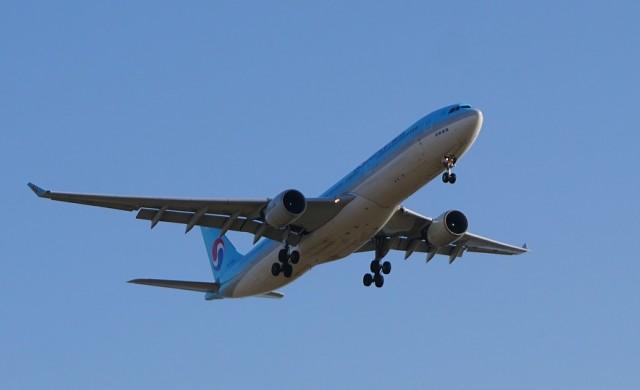 Безплатни билети до живот за бебе, родено в самолет