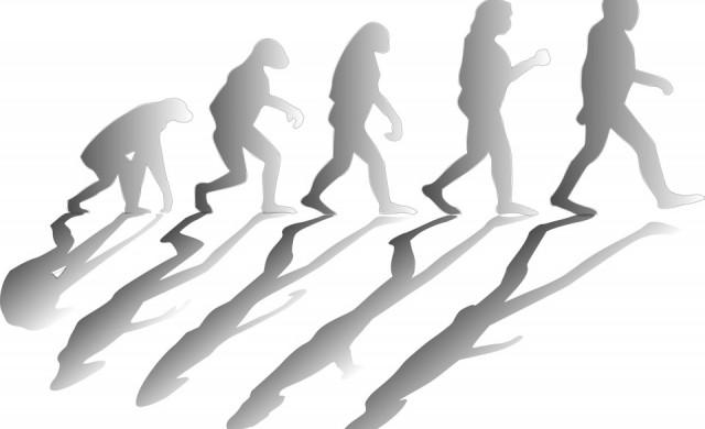 В Турция повече няма да изучават еволюционната теория на Дарвин