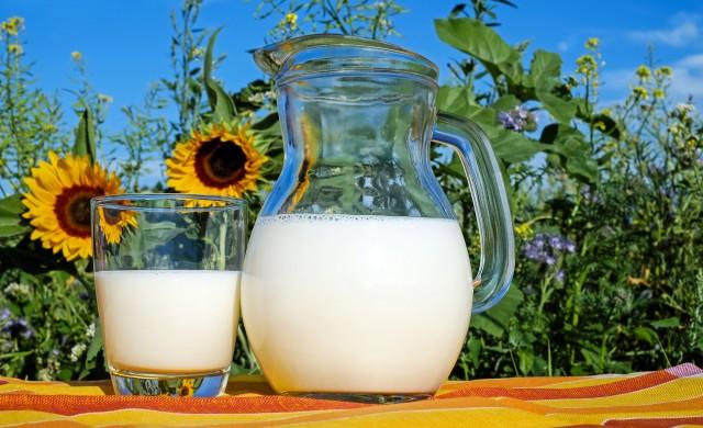 Наистина ли алтернативните млека са по-полезни от кравето?
