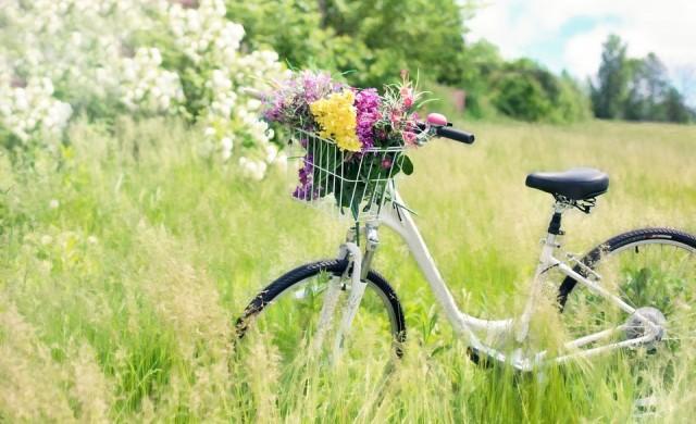 Интересни факти за велосипеда