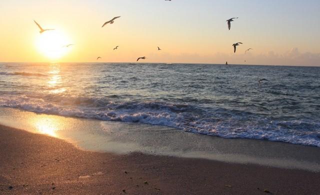 Най-дългият плаж у нас се простира на цели 12 километра