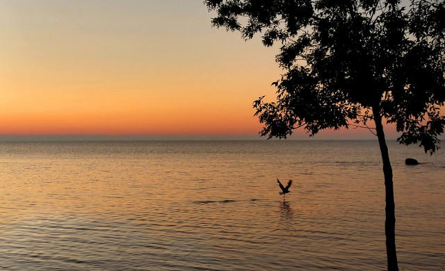 Седемте най-големи естествени езера в света
