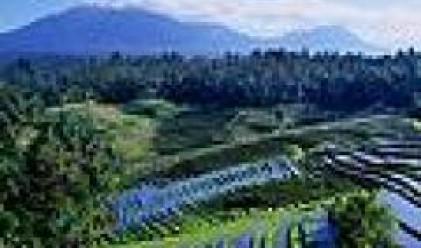 Фонд за недвижими имоти България вече притежава 35 500 дка земеделска земя