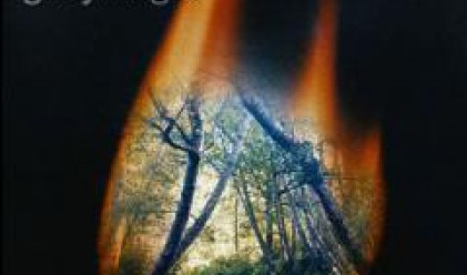 Близо 230 000 дка са засегнати от бушуващите пожари в страната