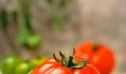 Цигари, зеле, чесън и домати поскъпнаха най-много за периода 2001-2007 г.