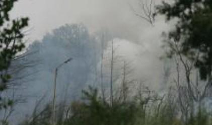 МОСВ: Няма замърсяване на въздуха в София и в района на Челопечене