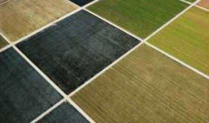 Земеделската земя - най-перспективният измежду имотните сектори
