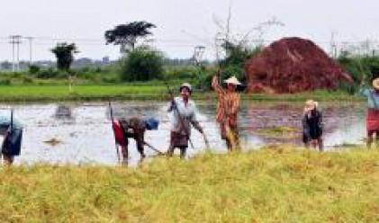 Възстановяването на Мианма ще струва 1 милиард долара