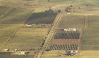 Земеделската земя в Уругвай поскъпва над два пъти за три години