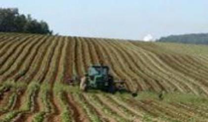 Цената на обработваемата земя във Великобритания с рекорден ръст от началото на 2008 г.