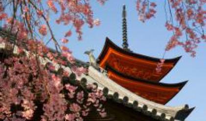 Рекорден брой туристи в Япония през първата половина на годината