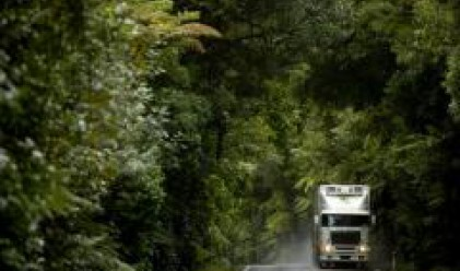Mitsubishi отчете рекордни продажби на камиони в Европа